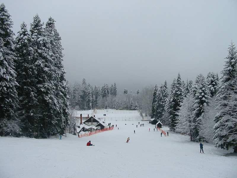 goc staze skijanje smestaj